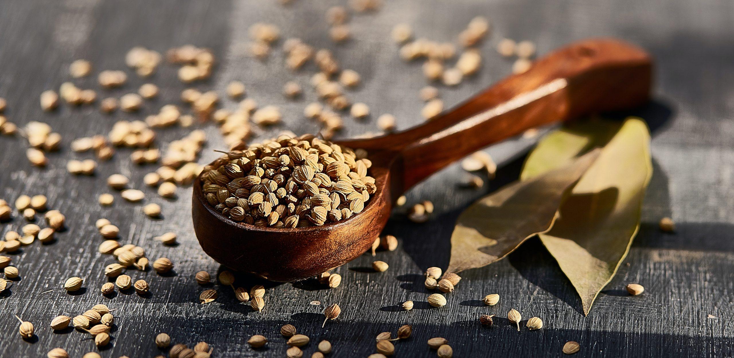 superfood coriander cilantro health nutrition food healthy